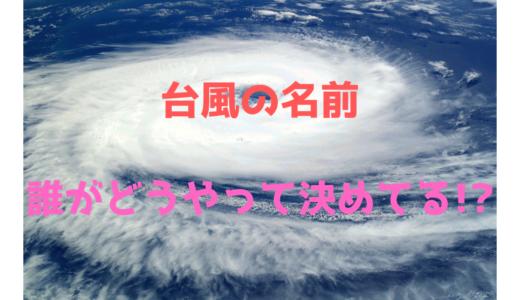 台風の名前は前もって決まっている!?決め方や誰が決めているのかを解説